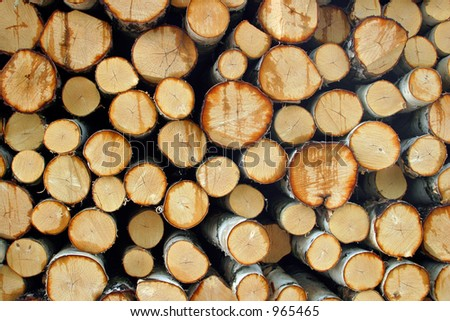 Timber wood pile, Finland - stock photo