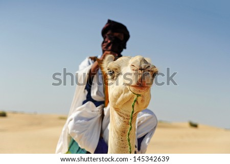 Timbuktu Tuareg camel 1 - stock photo