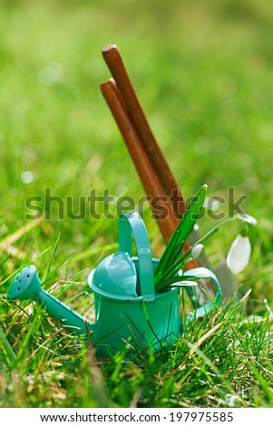 time for garden now�¢?�¦. decorative small gardening tools and snowdrops  on grass
