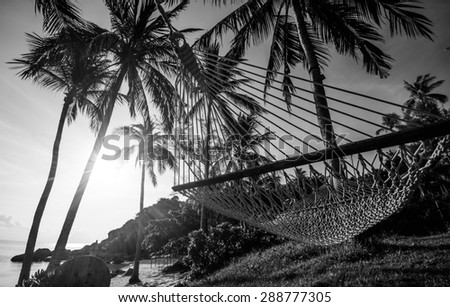 Time to relax with hammock and coconut tree at the beach on sunset time in Samui Island Thailand with black and white color - stock photo