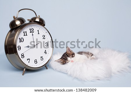 time to sleep for little cute kitten on blue background - stock photo