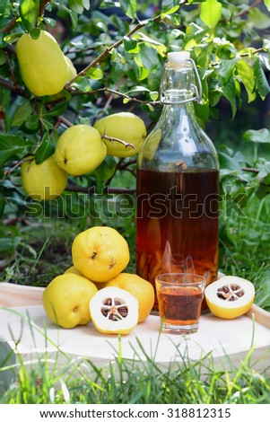 Tincture of quince and fruit on a wooden table. Photo taken outdoor. - stock photo