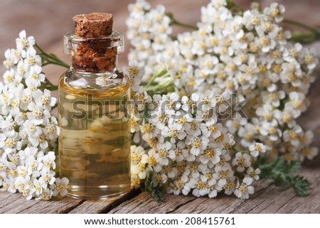 Tincture of yarrow in the bottle close-up on a background of flowers on the table. horizontal.  - stock photo
