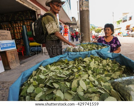 TINGO MARIA, PERU - JUNE 22: The sale of coca leaves in streets of Tingo Maria in Peru, 2011 - stock photo