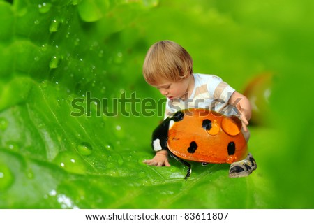 Tiny boy playing with a ladybird on a wet leaf