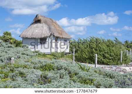 Tiny one room palm thatched roof beach house in tropical surroundings near Cancun, Mexico - stock photo