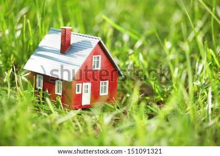 Tiny red house in green grass - stock photo