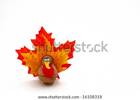 tiny turkey for Thanksgiving - stock photo