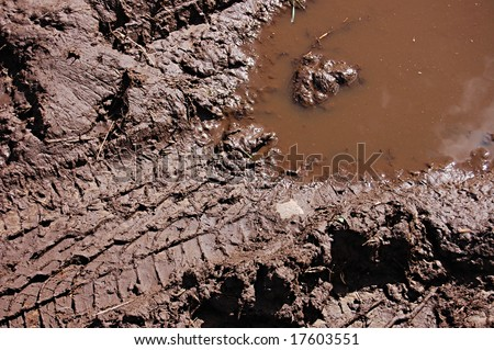tire track in the mud - stock photo