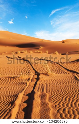 Tire tracks disappear into the sand dunes of the Sahara Desert. Concept for adventure, off track, independence, freedom, lost, gone, trek, off road, fun - stock photo