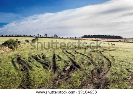 tire tracks in agricultural field - stock photo