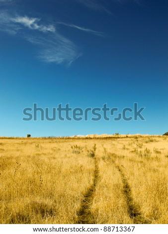 Tire Tracks in Field - stock photo