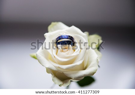 titanium wedding rings. A Traditional bride decoration  - stock photo