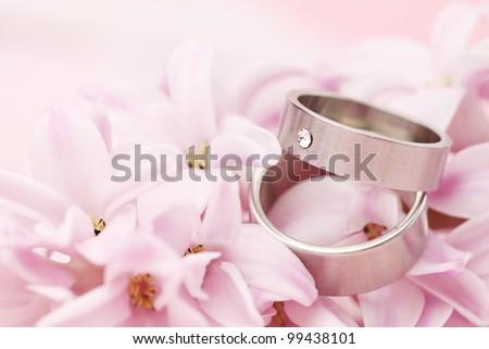 Titanium wedding rings on pink hyacinth. Shallow dof - stock photo