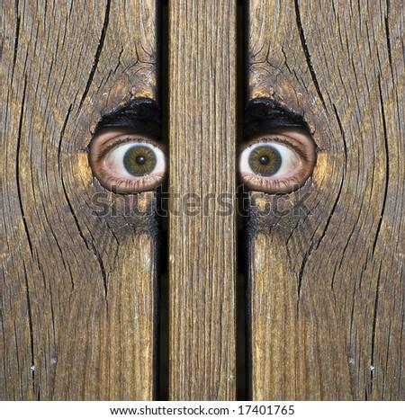 To intense eyes peeking through holes in fence! - stock photo