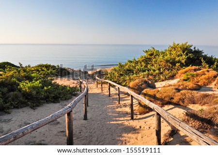 To the sea. Very quiet golden beach in Salento. Apulia. Italy. - stock photo