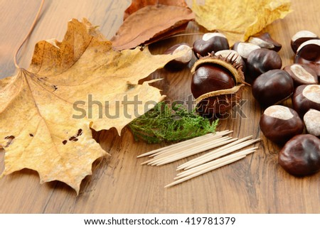 to tinker handmade figures of chestnuts and glue.
