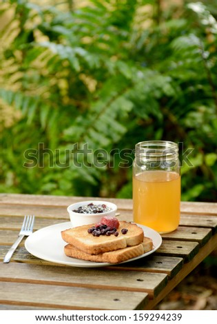 toast, apple juice and jam on picnic table in summer - stock photo
