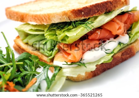 toast sandwich with salmon, vegetable and salad on white plate - stock photo