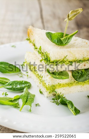 Toast with avocado paste and watercress. Selective soft focus - stock photo