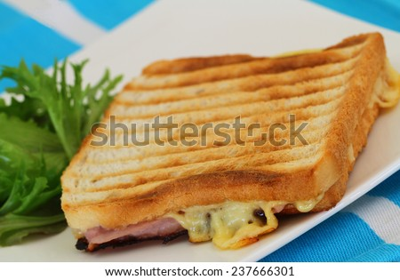 Toast with ham and cheese, closeup