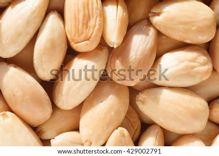 Toasted blanched almond. - stock photo