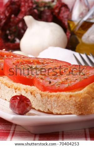 Toasted bread topped with tomato, olive oil and oregano served over a white plate. Selective focus, ultra shallow DOF. - stock photo