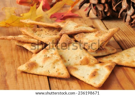 Toasted pita bread chips with herbal seasoning - stock photo