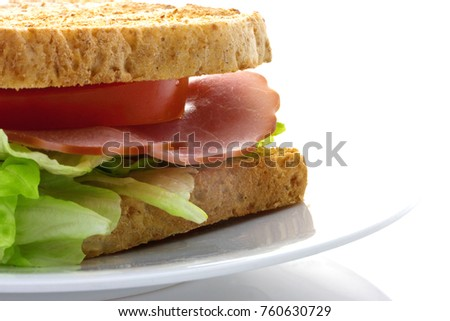 toasted sandwich on plate
