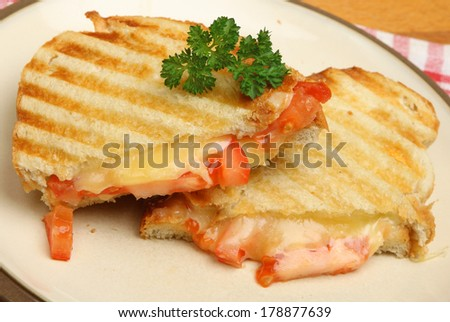 Toasted sandwich with cheese and tomato. - stock photo