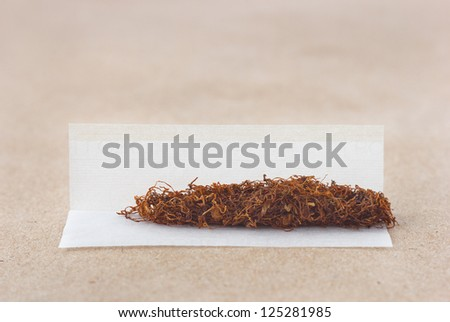 tobacco roll paper close up - stock photo