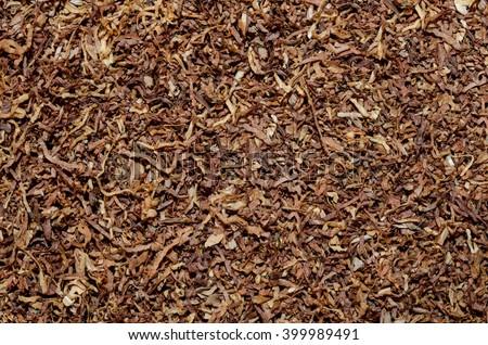 tobacco texture background. tobacco texture. tobacco texture.  tobacco texture. tobacco texture.  tobacco texture. tobacco texture.  tobacco texture. tobacco texture.  tobacco texture. tobacco texture - stock photo