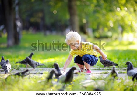 Toddler boy walking in the park and feeding pigeons at the summer day