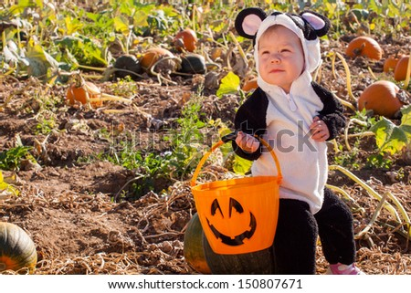 Toddler dressed up in cute costumes at the pumpkin patch. - stock photo