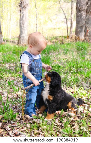 Toddler in denim overall playing with his puppy - stock photo