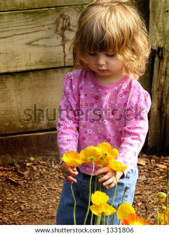 Toddler picking flowers - stock photo