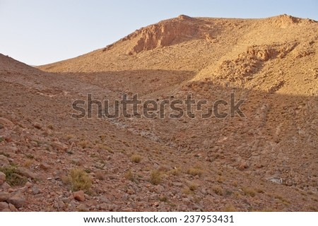 Todra Gorge canyon in the High Atlas mountains of Morocco, Africa
