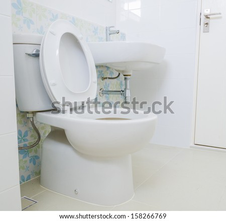 Woman Cleans Bathroom Toilet Scrub Brush Stock Photo