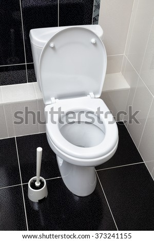 toilet and toilet ruff, black-and-white interior bathroom - stock photo