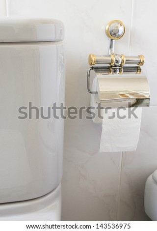 Toilet gray and toilet paper in vertical