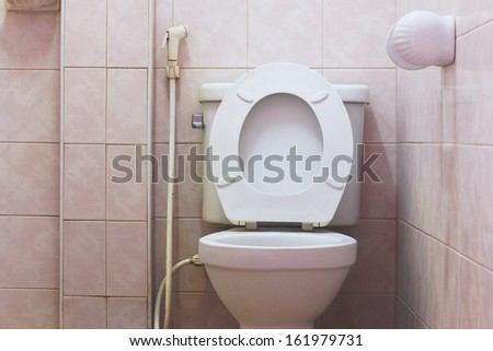 Toilet in the bathroom not clean