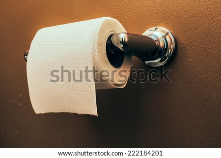 Toilet Paper Roll on Wall 3. Toilet paper roll on wall of rustic looking bathroom. - stock photo