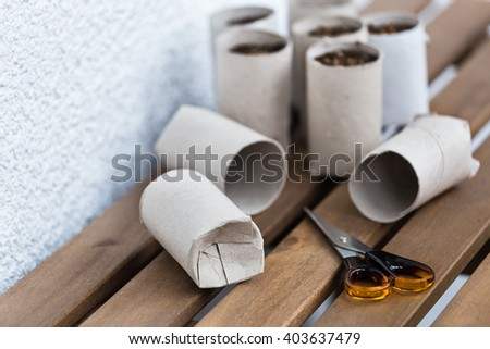 Toilet paper roll recycled as a seedling planters - stock photo