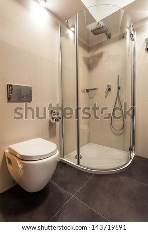 Toilet seat and shower in white bathroom - stock photo