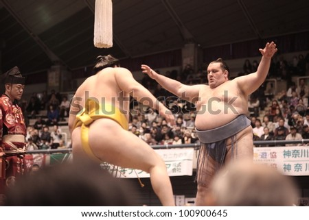 TOKYO - APRIL 7: Mongolian sumo wrestling champion Hakuho in a tournament on April 7, 2012 in Tokyo, Japan. Even though Sumo is Japan's national sport, most professional wrestlers are foreigners - stock photo