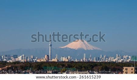 Tokyo city view  - stock photo