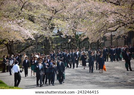TOKYO, JAPAN - APRIL 5 : Japanese salary men enjoy cherry blossom in spring season taken on April 5, 2013 - stock photo
