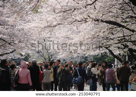 TOKYO, JAPAN - APRIL 6 : people watching sakura festival at Ueno Park in spring season with Cherry Blossom taken on April 6, 2009 - stock photo