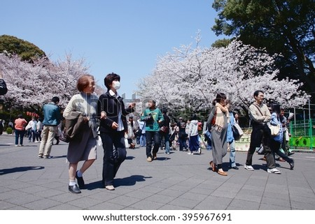 TOKYO, JAPAN - APRIL 12, 2012: Visitors enjoy cherry blossoms (sakura) in Ueno Park, Tokyo. Ueno Park is visited by up to 2 million people for annual Sakura Festival.