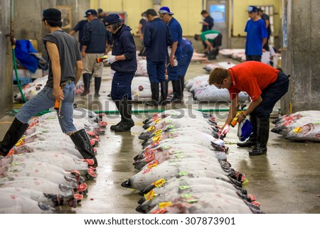 TOKYO, JAPAN - AUGUST 1, 2015: Prospective buyers inspect tuna displayed at Tsukiji Market. Tsukiji is considered the world's largest fish market. - stock photo